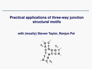 Practical applications of three-way junction structural motifs