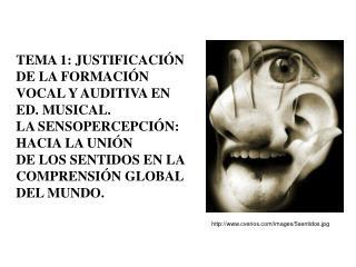 TEMA 1: JUSTIFICACIÓN  DE LA FORMACIÓN VOCAL Y AUDITIVA EN ED. MUSICAL.
