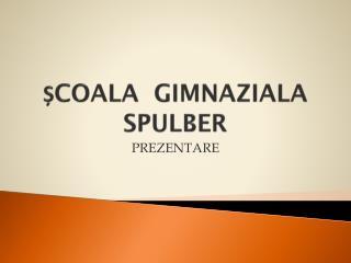 ȘCOALA  GIMNAZIALA SPULBER