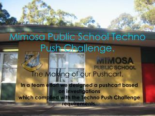 Mimosa Public School Techno Push Challenge.