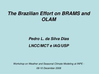 The Brazilian Effort on BRAMS and OLAM Pedro L. da Silva Dias LNCC/MCT e IAG/USP