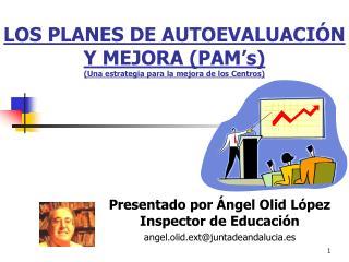 LOS PLANES DE AUTOEVALUACIÓN Y MEJORA (PAM's) (Una estrategia para la mejora de los Centros)