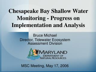 Chesapeake Bay Shallow Water Monitoring - Progress on Implementation and Analysis