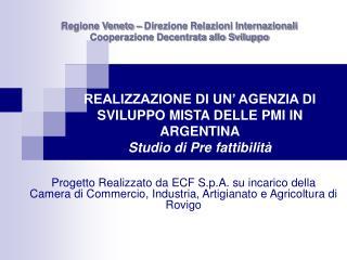 REALIZZAZIONE DI UN' AGENZIA DI SVILUPPO MISTA DELLE PMI IN ARGENTINA Studio di Pre fattibilità