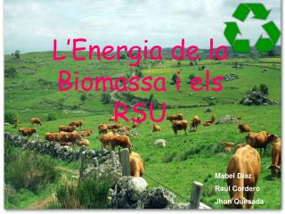 L'Energia de la Biomassa i els RSU