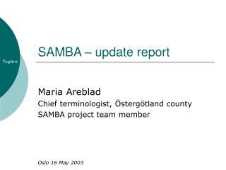 SAMBA – update report