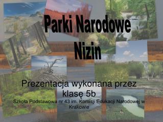 Parki Narodowe Nizin