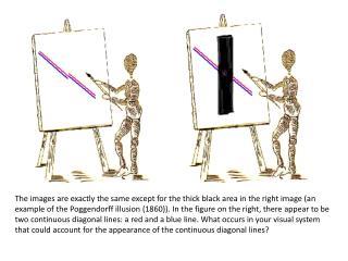 illusions powerpoint
