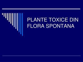 PLANTE TOXICE DIN FLORA SPONTANA