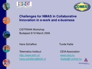 Challenges for NM A S in Collaborative Innovation in e-work and e-business