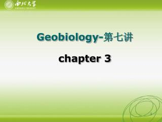 Geobiology- 第七讲 chapter 3