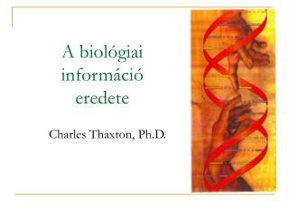 A biológiai  információ  eredete