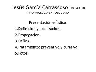 Jesús García Carrascoso  TRABAJO DE FITOPATOLOGIA ENF DEL OLMO.