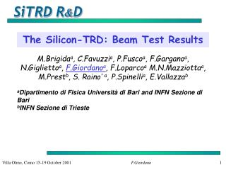 The Silicon-TRD: Beam Test Results