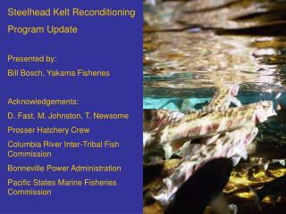 Steelhead Kelt Reconditioning Program Update Presented by: Bill Bosch, Yakama Fisheries