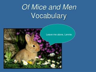 Of Mice and Men Vocabulary