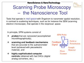 Scanning Probe Microscopy  –  the Nanoscience Tool