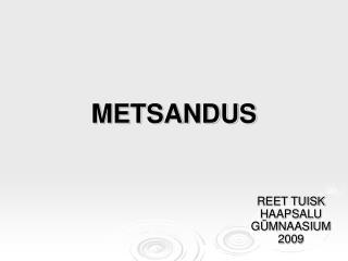 METSANDUS