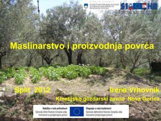 Maslinarstvo i proizvodnja povrća