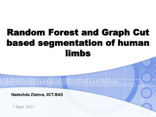 Random Forest and Graph Cut based segmentation of human limbs