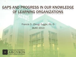 Gaps and progress in our Knowledge of learning organizations