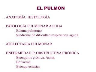 EL PULM N