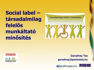 Social label –  t ársadalmilag felelős munkáltató minősítés