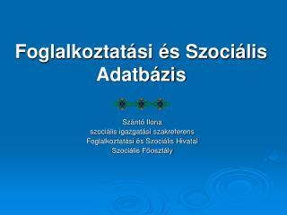 Foglalkoztatási és Szociális Adatbázis