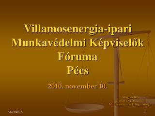 Villamosenergia-ipari Munkavédelmi Képviselők Fóruma Pécs 2010. november 10.