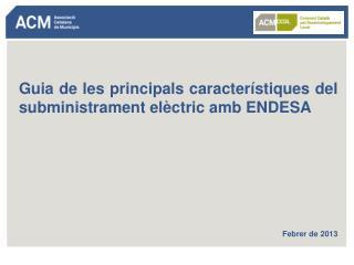 Guia de les principals característiques del subministrament elèctric amb ENDESA