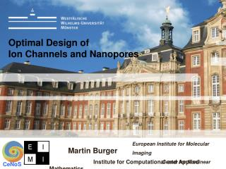 Optimal Design of  Ion Channels and Nanopores
