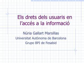 Els drets dels usuaris en l'accés a la informació