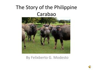 The Story of the Philippine Carabao
