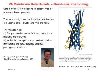 V6 Membrane Beta Barrels – Membrane Positioning