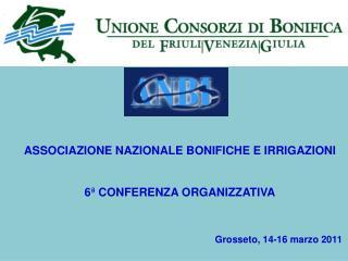 ASSOCIAZIONE NAZIONALE BONIFICHE E IRRIGAZIONI 6 ª  CONFERENZA ORGANIZZATIVA