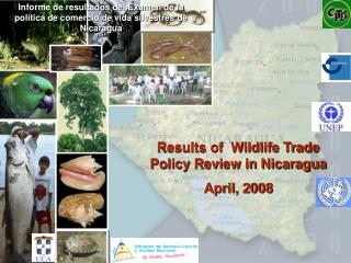 Results of  Wildlife Trade Policy Review in Nicaragua April, 2008