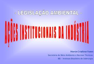 AÇÕES INSTITUCIONAIS DA INDÚSTRIA