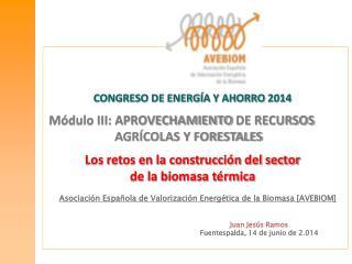 Asociación Española de Valorización Energética de la Biomasa [AVEBIOM]