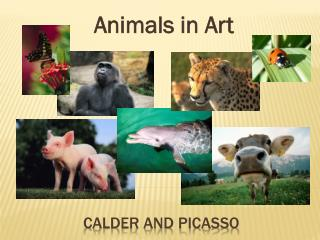 Calder and  picasso