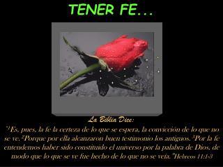 TENER FE...