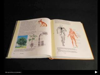 Animatie uit de boeken