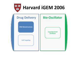 Harvard iGEM 2006
