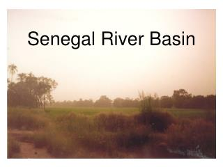Senegal River Basin