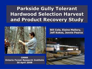 Parkside Gully Tolerant Hardwood Selection Harvest and Product Recovery Study