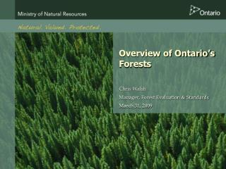 Overview of Ontario's Forests