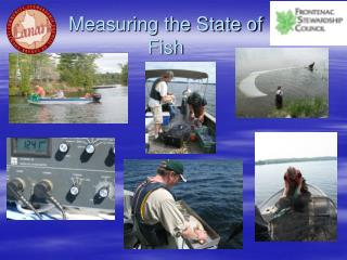 Measuring the State of Fish