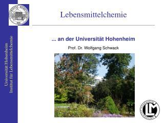 Universit t Hohenheim Institut f r Lebensmittelchemie