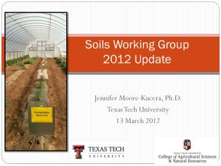 Soils Working Group 2012 Update