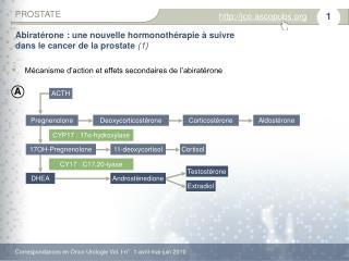 Abiratérone : une nouvelle hormonothérapie à suivre  dans le cancer de la prostate  (1)