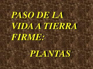 PASO DE LA VIDA A TIERRA FIRME: PLANTAS